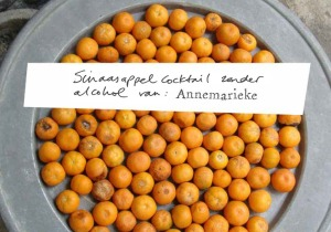 Sinaasappelcocktail zonder alcohol van Annemariek_21 januari_beeld