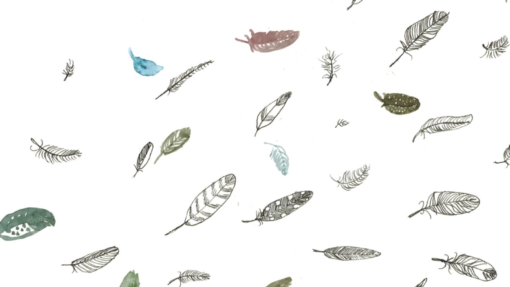 5 dingen die je niet over vogels wist