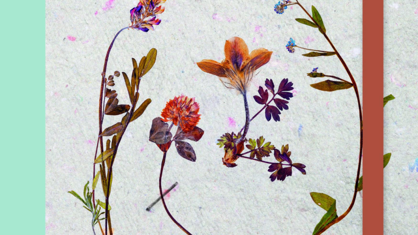 Pocket herbarium, eíndelijk weer terug